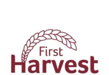 First Harvest To Attend the Global Developers Conference