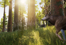 Hunting Simulator Goes into the Wild in Debut Trailer