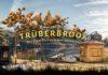 "Headup Announces ""Trüberbrook"" A Stunning Adventure Game"